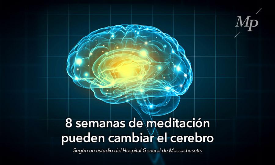 La meditación puede cambiar el cerebro - Mireia Poch