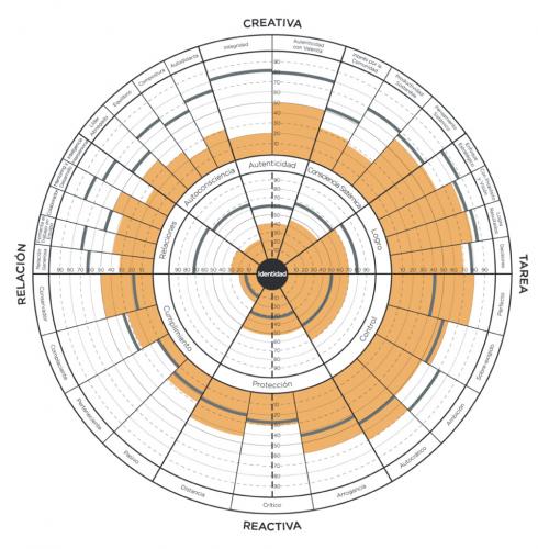 Gráfica modelo competencias 360º - Mireia Poch